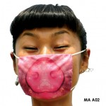 ways of protection against swine flu